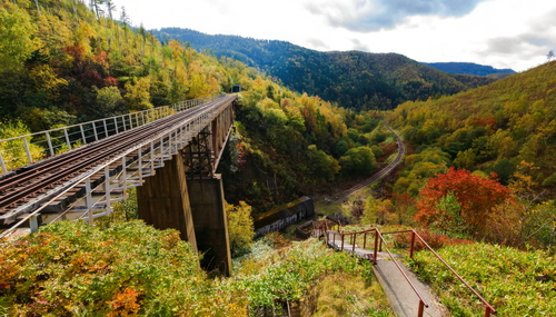 Photo - japanese railway bridge on Sakhalin island Russia
